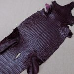 Burgundy Heng Long Crocodile