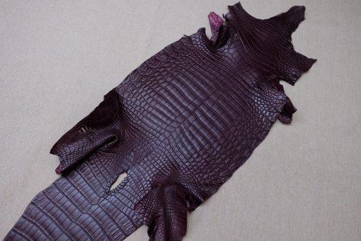 Burgundy Heng Long Crocodile
